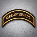ASSISTANT DIRECTOR Patch Gold