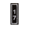 Year 17 Patch - SILVER